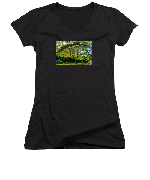Spider Tree Women's V-Neck