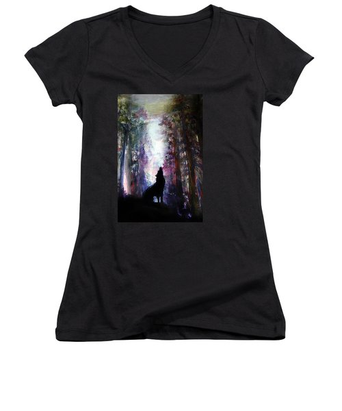 Spirit Guide Women's V-Neck T-Shirt