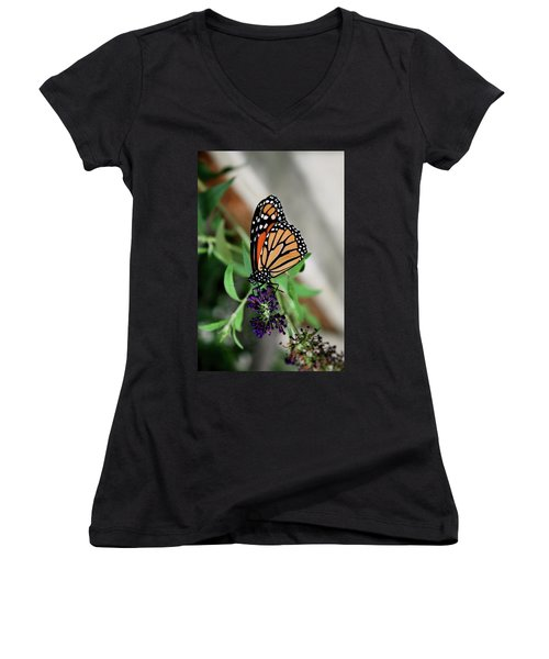 Women's V-Neck T-Shirt (Junior Cut) featuring the photograph Spotted Butterfly by Cathy Harper