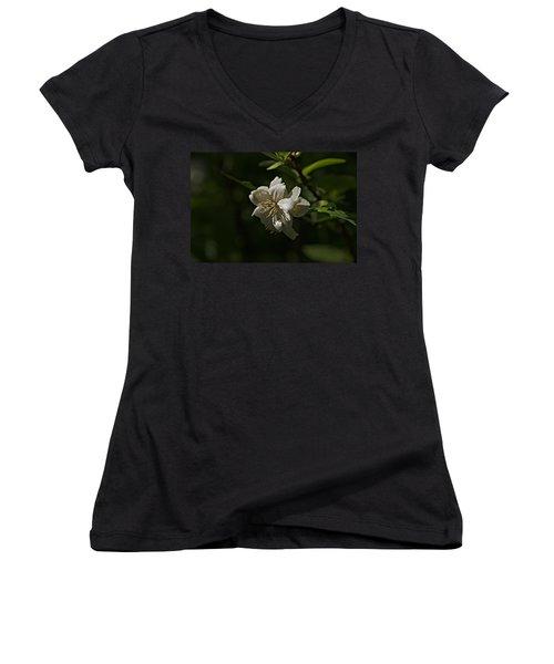 Spring 2016 30 Women's V-Neck T-Shirt (Junior Cut) by Cendrine Marrouat