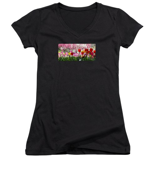 Spring Women's V-Neck T-Shirt (Junior Cut) by Angela DeFrias
