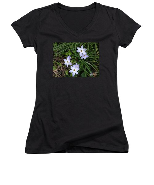 Spring Beauties Women's V-Neck T-Shirt (Junior Cut)