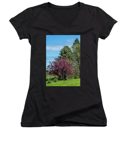 Women's V-Neck T-Shirt (Junior Cut) featuring the photograph Spring Blossoms by Paul Freidlund