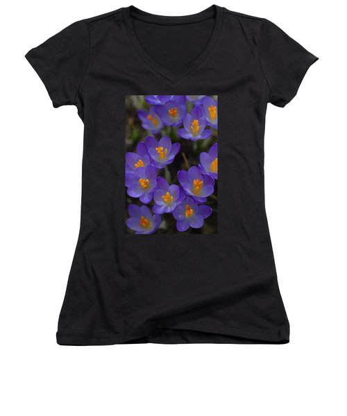 Spring Charmers Women's V-Neck T-Shirt (Junior Cut) by Tim Good