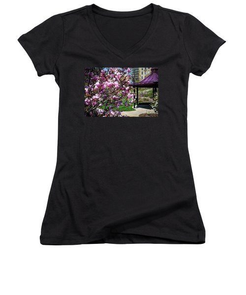 Spring Garden Women's V-Neck T-Shirt (Junior Cut)