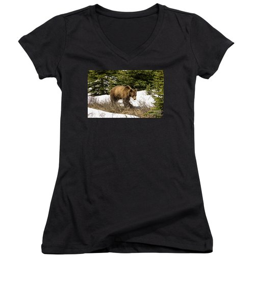 Spring Grizzly Women's V-Neck T-Shirt