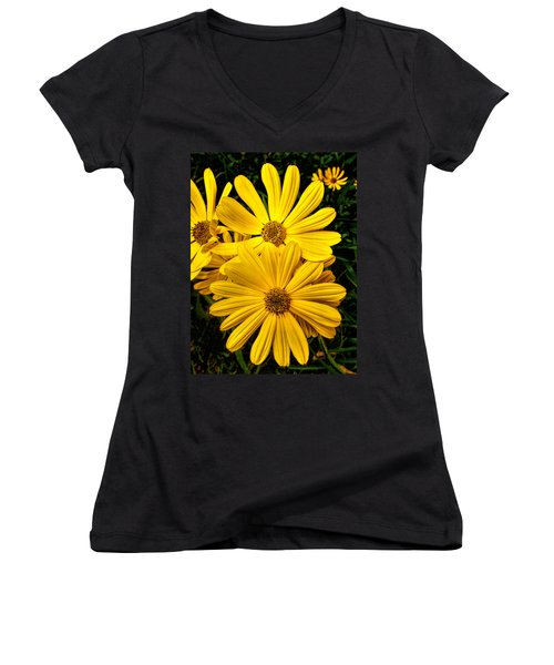 Spring Has Come To Georgia Women's V-Neck (Athletic Fit)