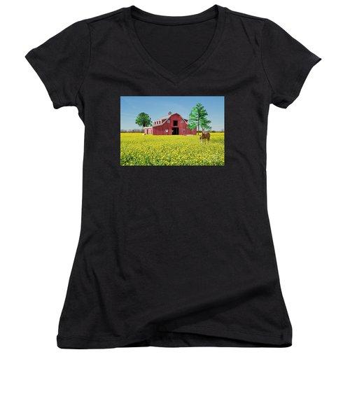 Spring On The Farm Women's V-Neck T-Shirt (Junior Cut) by Bonnie Barry