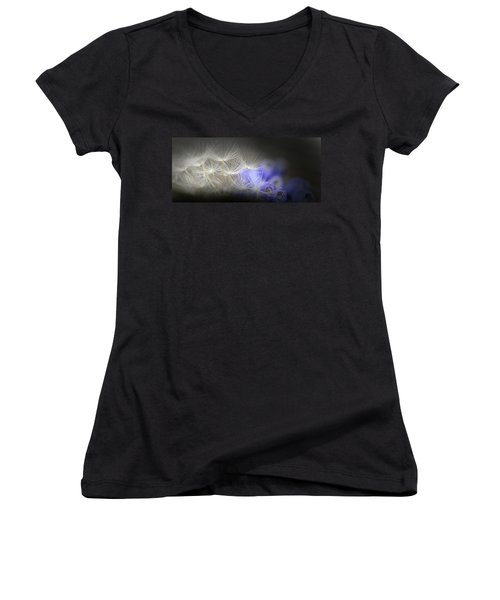 Spring Wishes Women's V-Neck T-Shirt