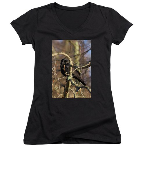 Women's V-Neck T-Shirt (Junior Cut) featuring the photograph Springtime Crow by Bill Wakeley