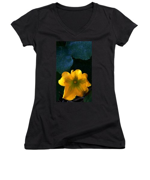Women's V-Neck T-Shirt (Junior Cut) featuring the photograph Squash Blossom by Lenore Senior