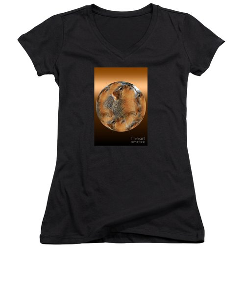 Squirrel In A Ball Women's V-Neck (Athletic Fit)