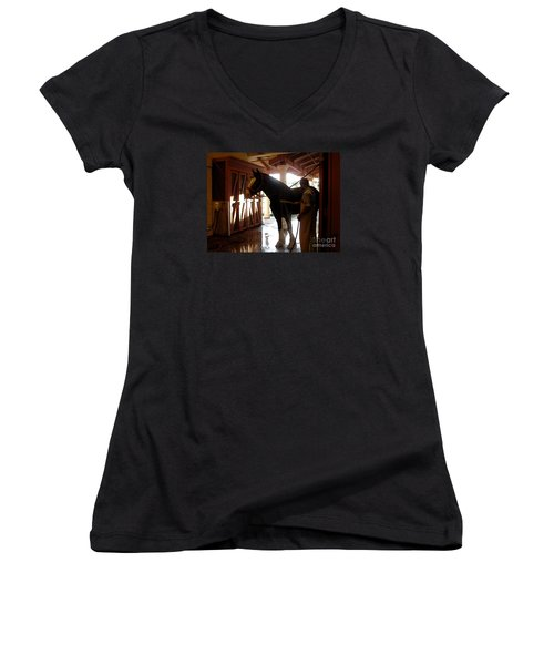 Stable Groom - 1 Women's V-Neck T-Shirt (Junior Cut) by Linda Shafer