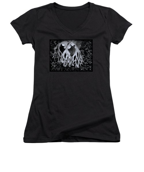 Staghorn Fern Women's V-Neck T-Shirt (Junior Cut) by Wayne Sherriff