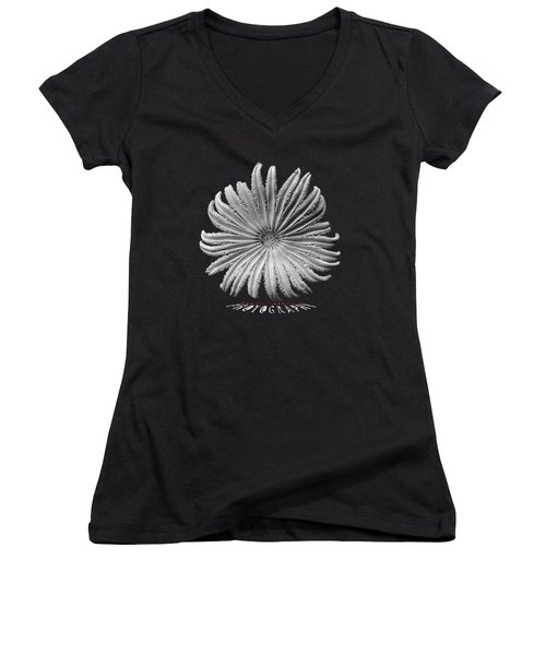Starfish Transparency Women's V-Neck (Athletic Fit)