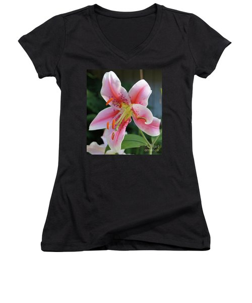 Stargazer Women's V-Neck (Athletic Fit)