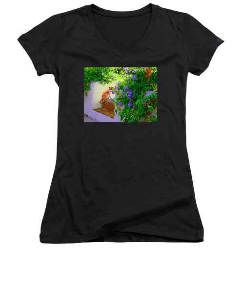 Still Waiting Women's V-Neck T-Shirt (Junior Cut) by David  Van Hulst