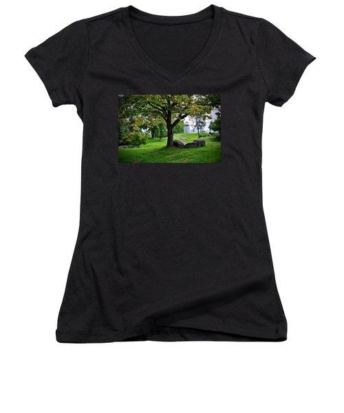 Stony Point Landscape Women's V-Neck (Athletic Fit)