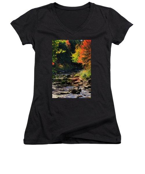 Women's V-Neck T-Shirt (Junior Cut) featuring the photograph Stream by Tom Prendergast