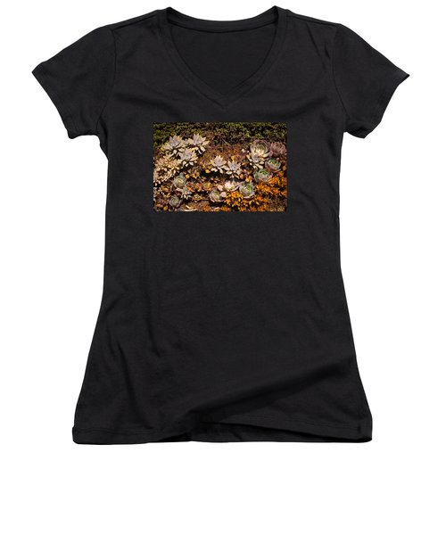 Women's V-Neck T-Shirt (Junior Cut) featuring the photograph Succulents Vertical Garden by Catherine Lau