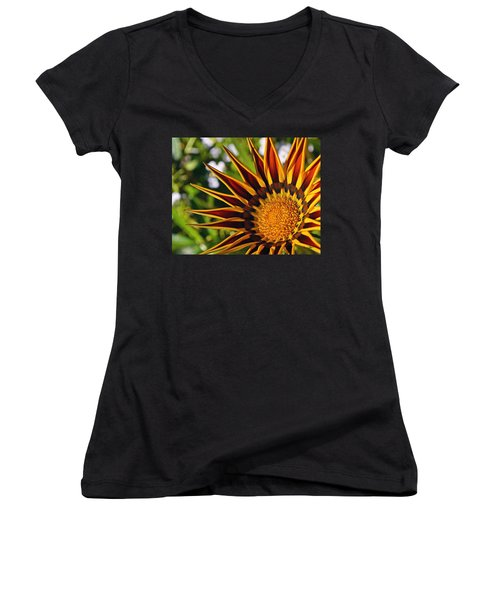 Summer Garden Women's V-Neck T-Shirt