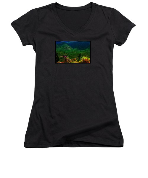 Women's V-Neck T-Shirt (Junior Cut) featuring the photograph Summer In Upper Pacheco Canyon by Susanne Still