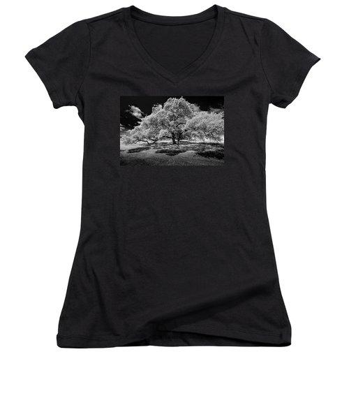 A Summer's Night Women's V-Neck T-Shirt (Junior Cut) by Darryl Dalton