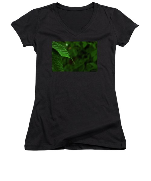 Summer Rain Women's V-Neck T-Shirt