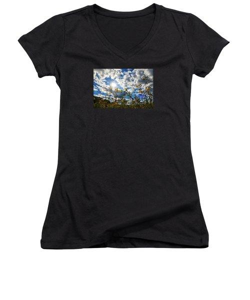Summer Scene Women's V-Neck T-Shirt (Junior Cut) by Nikki McInnes