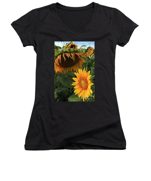 Sun Flowers  Past  And  Present  Women's V-Neck T-Shirt (Junior Cut) by Paula Guttilla