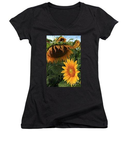 Sun Flowers  Past  And  Present  Women's V-Neck T-Shirt (Junior Cut)