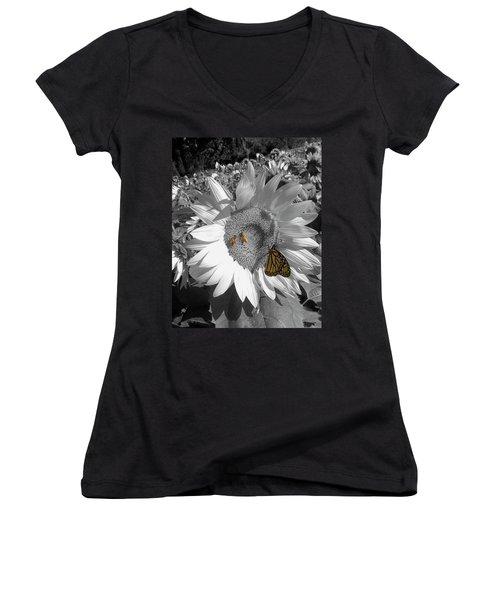 Sunflower In Black And White Women's V-Neck