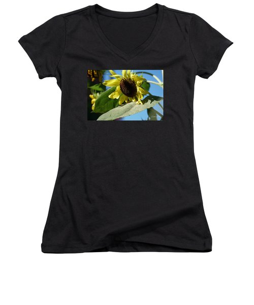 Sunflower, Lemon Queen, With Pollen Women's V-Neck (Athletic Fit)
