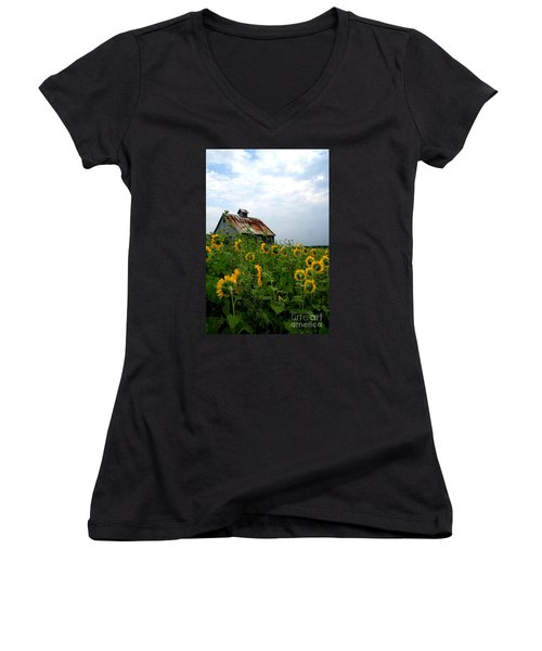 Sunflowers Along Rt 6 Women's V-Neck T-Shirt (Junior Cut)
