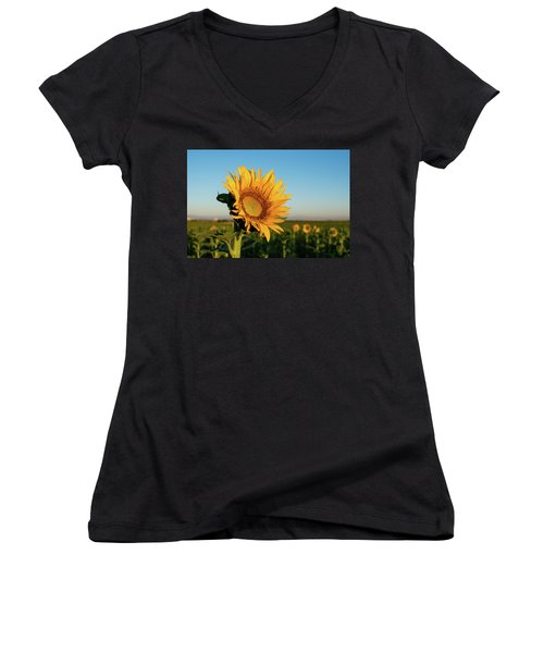 Sunflowers At Sunrise 2 Women's V-Neck