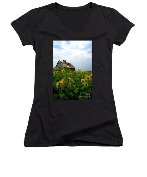 Sunflowers Rt 6 Women's V-Neck