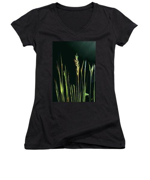 Sunlit Grasses Women's V-Neck