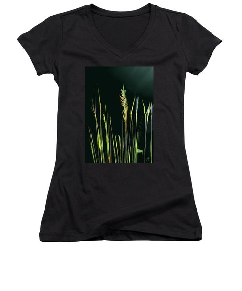 Sunlit Grasses Women's V-Neck