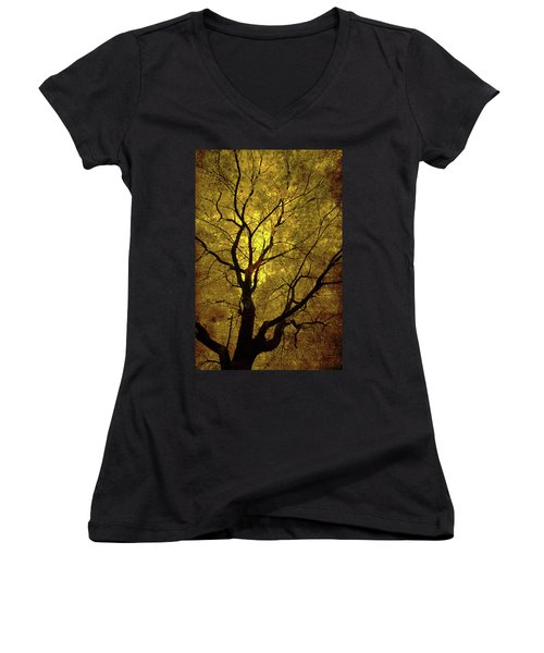 Sunny Branches Women's V-Neck T-Shirt (Junior Cut) by Gray  Artus