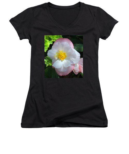 Women's V-Neck T-Shirt (Junior Cut) featuring the photograph Sunny by Teresa Schomig