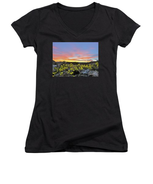 Sunset And Primrose Women's V-Neck T-Shirt (Junior Cut) by Michele Penner