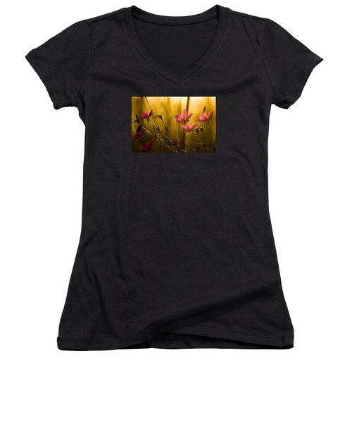 Sunset Beauties Women's V-Neck T-Shirt (Junior Cut) by Parker Cunningham