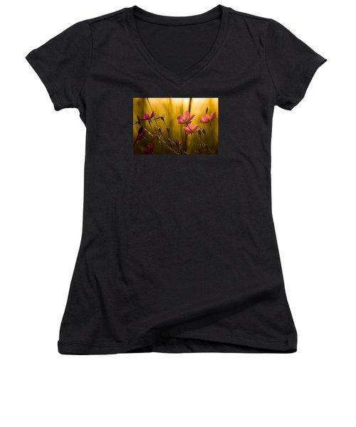 Sunset Beauties Women's V-Neck T-Shirt
