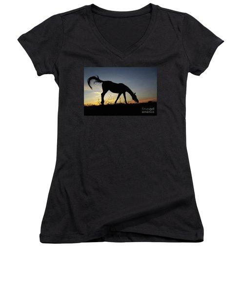 Sunset Horse Women's V-Neck (Athletic Fit)