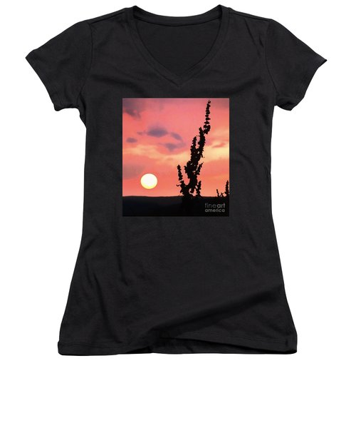 Sunset Women's V-Neck T-Shirt (Junior Cut) by Raymond Earley