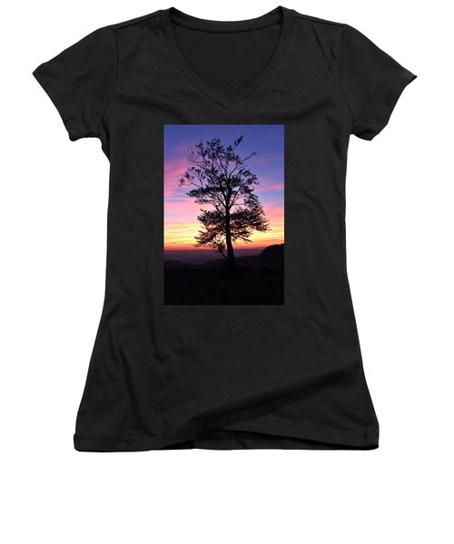 Sunset Tree Women's V-Neck T-Shirt (Junior Cut) by RKAB Works