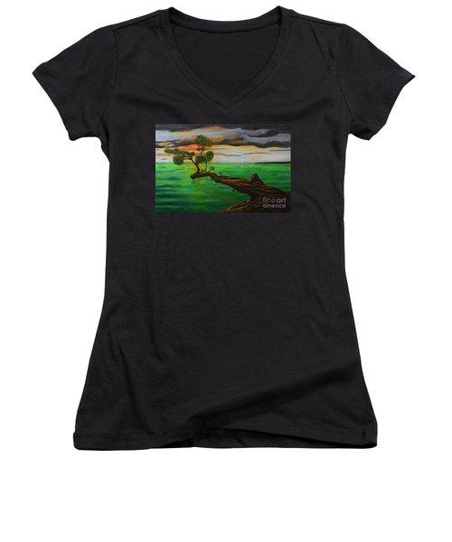 Sunsetting Women's V-Neck T-Shirt (Junior Cut) by Melvin Turner