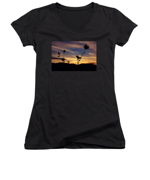 Superbloom Sunset In Death Valley 100 Women's V-Neck T-Shirt