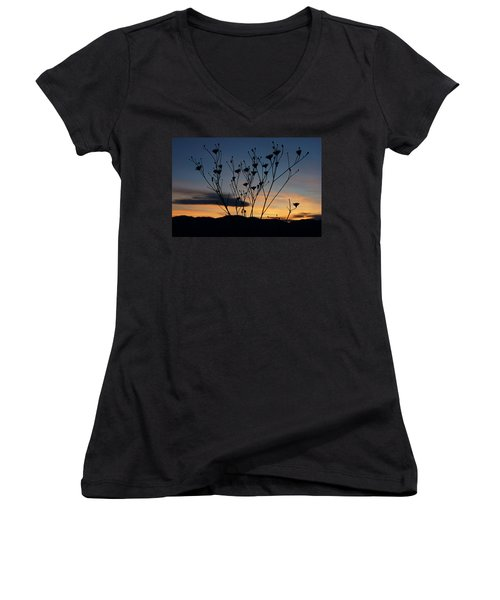 Superbloom Sunset In Death Valley 103 Women's V-Neck T-Shirt