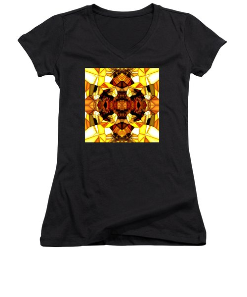 Swan Lake Women's V-Neck T-Shirt